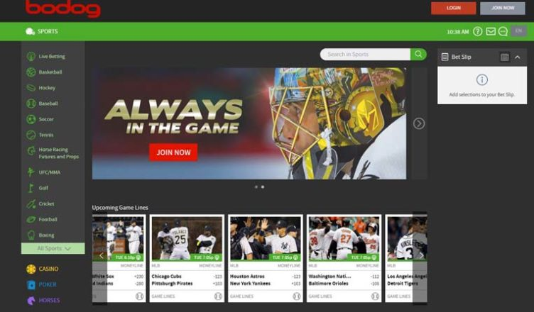 about bodog sportsbook