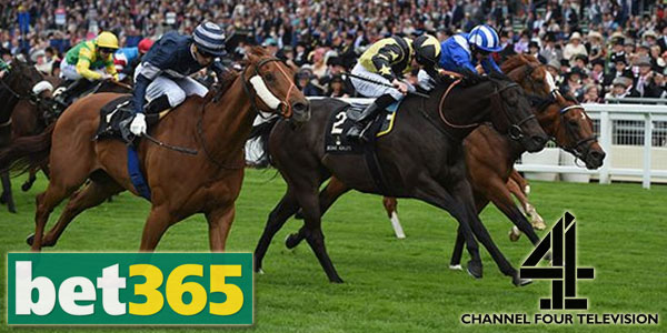 Bet365 Sportsbook offers you best prices with live Channel 4 races