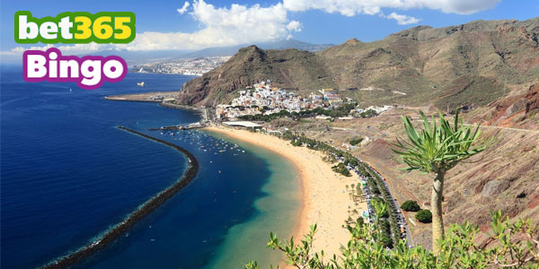 Free trip to the Canary Islands