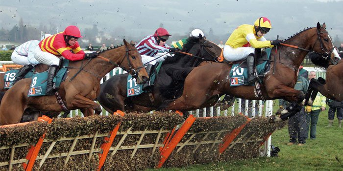 Horse Racing 101 just in time for the Cheltenham Festival