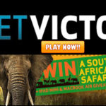 Let BetVictor Casino Send You To a South African Safari