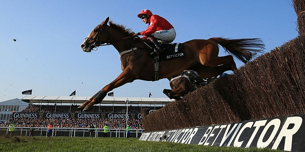 Bet on Cheltenham Races Thanks to BetVictor's Free Bet Offers