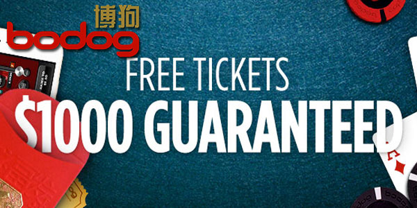 Bodog88 Casino shares $1000 dollar daily in exclusive Valentine's Promotion