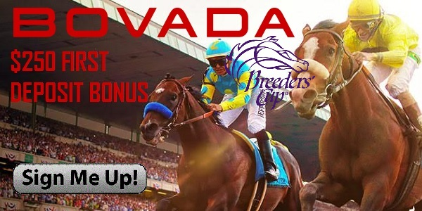 Bovada Sportsbook for horseracing betting Breeders Cup