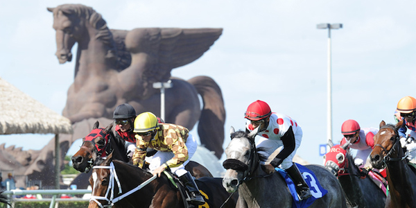 Pegasus World Cup bets 2017