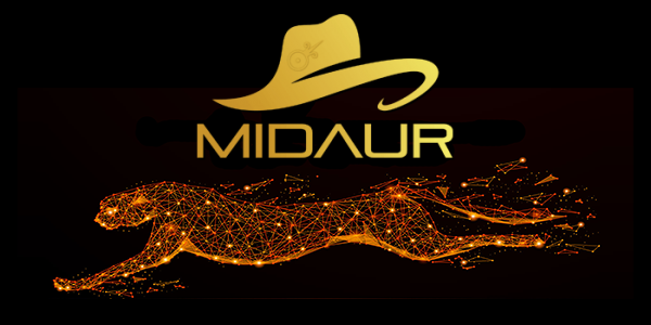 Review about Midaur Casino