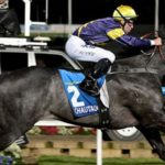 Bet On Chautauqua To Win The Everest; Richest Turf Race Ever