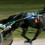 Harness Drivers in New Zealand Can No Longer Bet On Races They Compete In