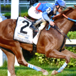Time To Get Your Bet On The Dubai World Cup Ready