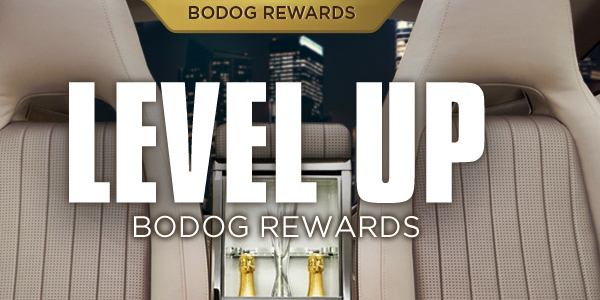 Bodog Casino Loyalty Program