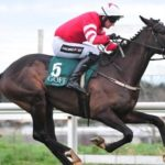 Champion Bumper Odds Show It's Open To All In 2018