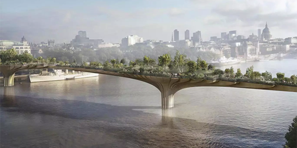 bet on Boris Johnson Bridge