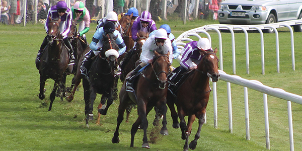 Epsom Derby Bets