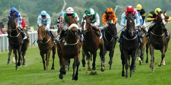 York Races Betting Promo at 888sport Offers GBP 5 Horse Racing Free  Bets!