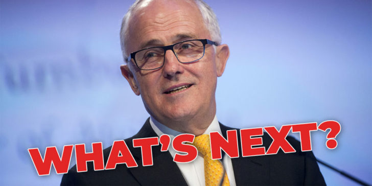 Bet on Turnbull's next job