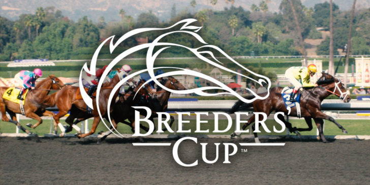 2018 Breeders Cup Odds Enable