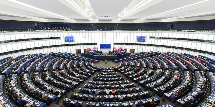 Bet on the European Parliament Elections