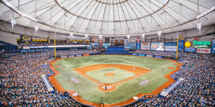 2019 American League Winner Odds: The Rays To Be the Revelation of the Season