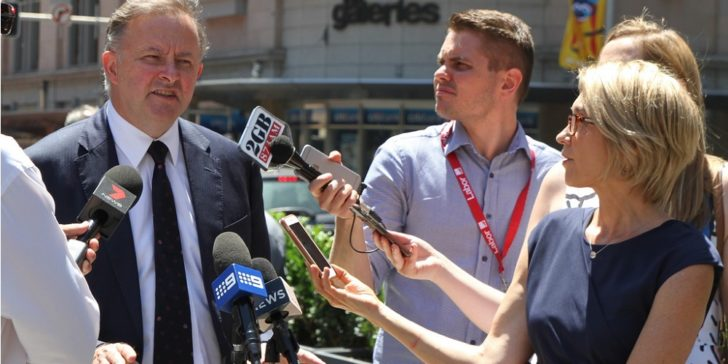 Next Australian Labor Party Leader Betting Odds Anthony Albanese