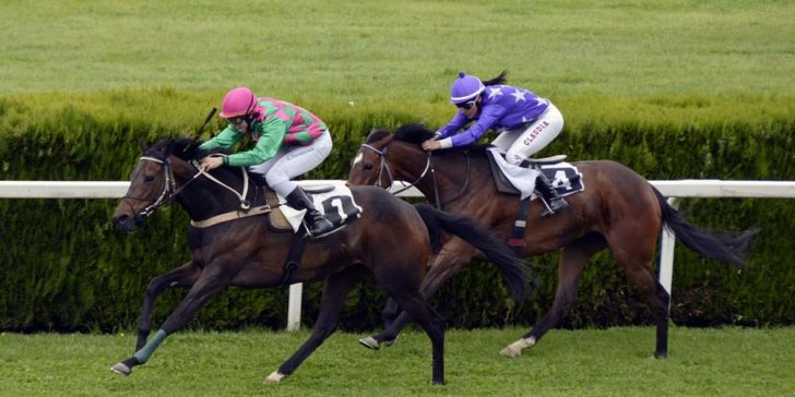 2019 Irish 1,000 Guineas Odds
