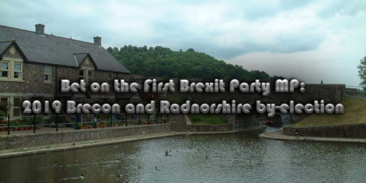 Bet on the First Brexit Party MP 2019 ByElections Brecon