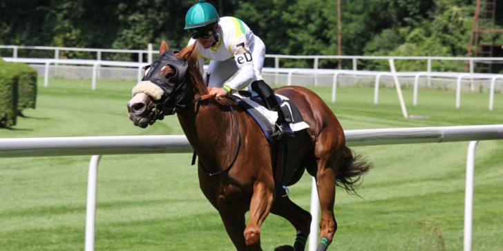 Veracious Sussex Stakes Odds