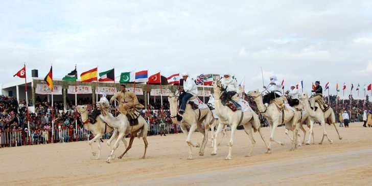 How To Win At Camel Racing