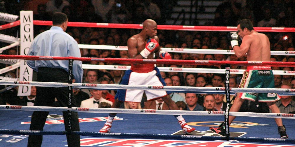 Floys Mayweather Bankruptcy Predictions Boxing
