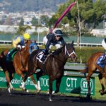 Horse Betting Mistake Cost Punter Dearly