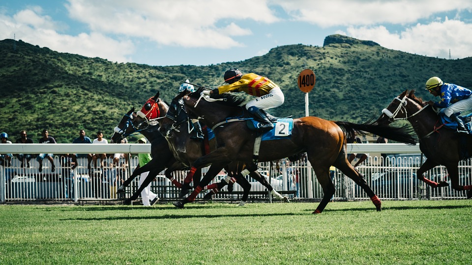 online betting, online sportsbooks, www.gamingzion.com, horse racing, horse doping