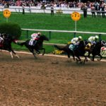 Preakness Stakes 2020 Betting Odds- Dennis' Moment on the Roll