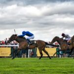 A Bet on the Ascot Gold Cup Is Rewarding and Fun As Well