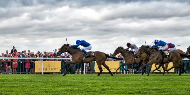 Bet on the Ascot Gold Cup