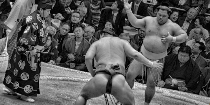 ultimate guide to sumo