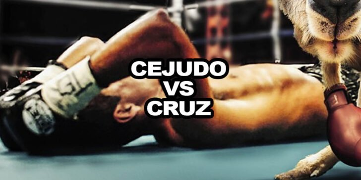 Cejudo vs Cruz betting predictions