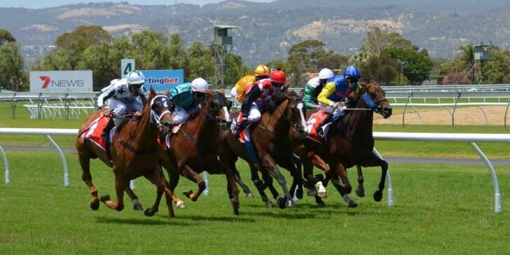 Bet on Horse Racing This Week