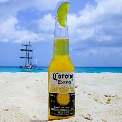 Plundering of Mexican Culture corona