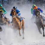 Introduction To Online Tote Betting
