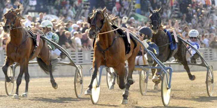 Elitloppet 2021 betting lines sell localbitcoins cash