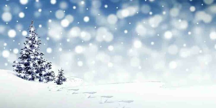 Bet On White Christmas in 2020