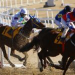 British MPs & Industry At Odds On UK Horse Racing Future