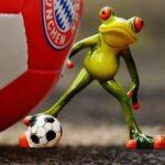 New Sports Betting Sites in Germany – Go for Them!