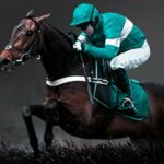bet365 Casino Grand National Sweepstake Offer Gives Away Free Spins