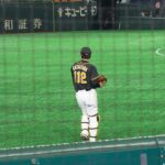 2021 NPB Predictions Points That the Bird Is the Word