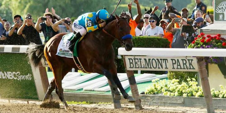 Odds On The Belmont Stakes