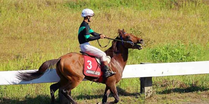 Historical Horse Racing in New Hampshire