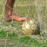 Professional vs Amateur Sports: What's the Difference