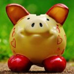 Pig-Themed Slot Machines – Here are the TOP5